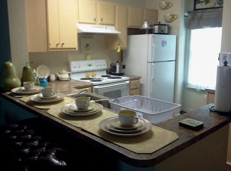 Fully Equipped Kitchen at Lakeview Apartments, Lyons, Georgia