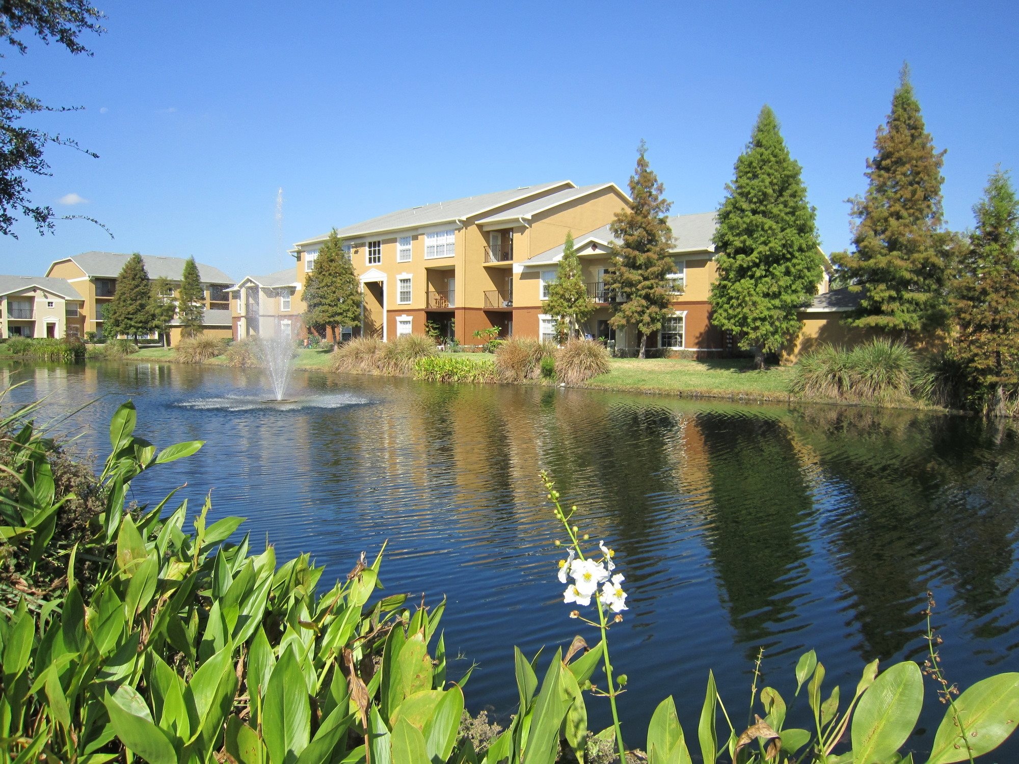 luxury-apartments-Pinellas-Park-FL
