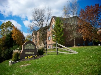 1010 Loveland-Madeira Road 1-2 Beds Apartment for Rent Photo Gallery 1
