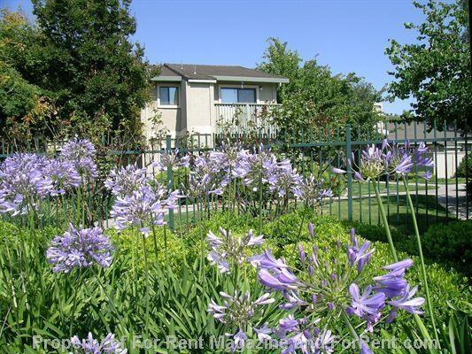 Garden Apartments