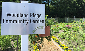 Community Garden at Woodland Ridge Apartments in Spring Lake