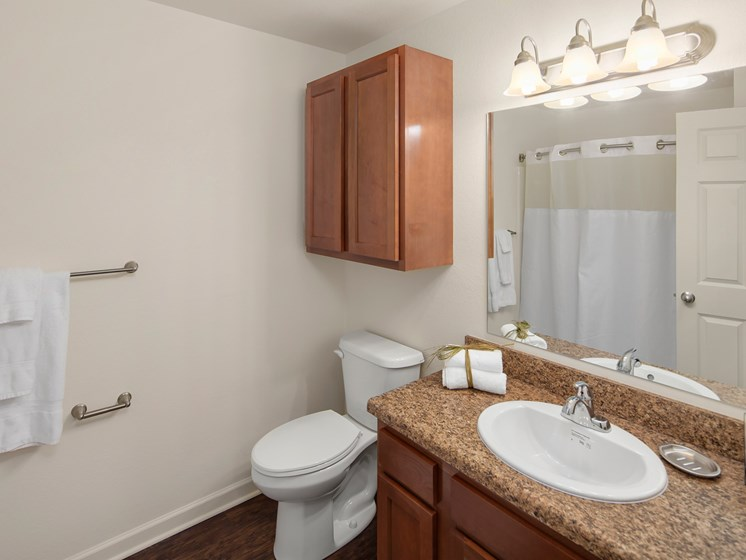 Large Bathrooms at Woodland Ridge Apartments in Spring Lake, MI