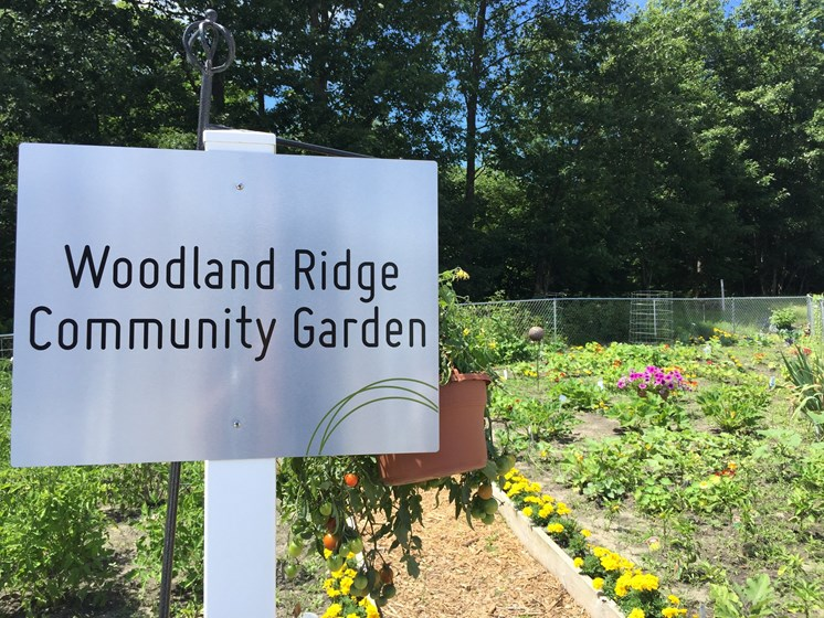Community Garden at Woodland Ridge Apartments in Grand Haven, MI