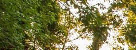 Riverdale homepagegallery 4