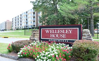 2423-B Wellbridge Drive Studio-2 Beds Apartment for Rent Photo Gallery 1