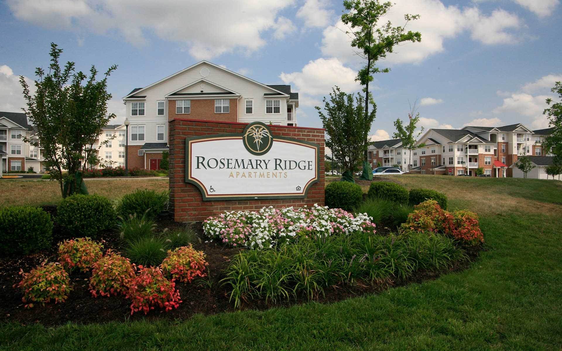 Rosemary Ridge background 1