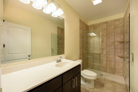 Beautifully Renovated Bathrooms