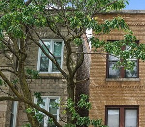 906 N. Damen Ave. 1-2 Beds Apartment for Rent Photo Gallery 1