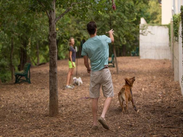 Our pet park runs adjacent to Shoal Creek, at THE MONARCH BY WINDSOR, 801 West Fifth Street, Austin