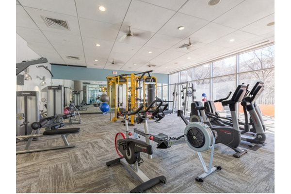 24-Hour Expansive fitness center with cardio and strength equipment at THE MONARCH BY WINDSOR, 801 West Fifth Street, TX