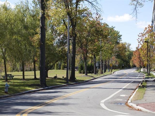 Greenway in Cambridge MA