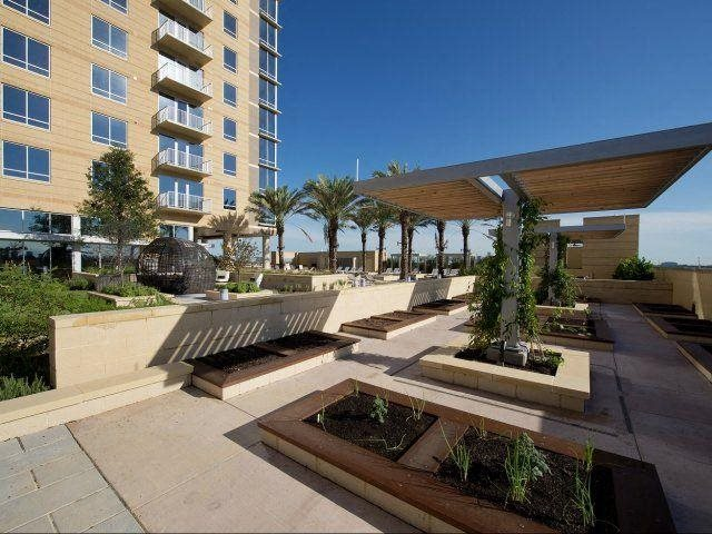 Herb and Vegetable Garden, at The Sovereign at Regent Square, 3233 West Dallas, Houston, TX