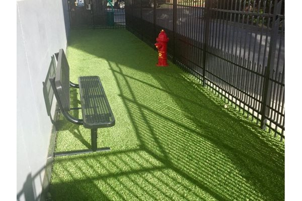5550 Wilshire at Miracle Mile by Windsor, Los Angeles, CA, 90036 is a Pet Friendly Community With Dog Run