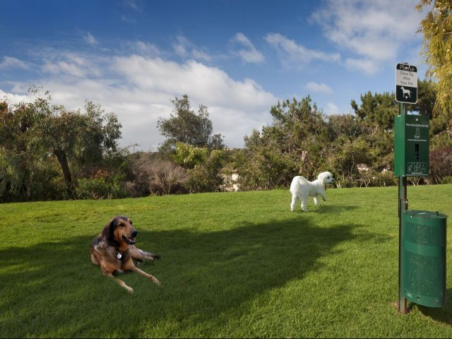 Pet Friendly Community at Windsor at Aviara, Carlsbad, CA, 92011