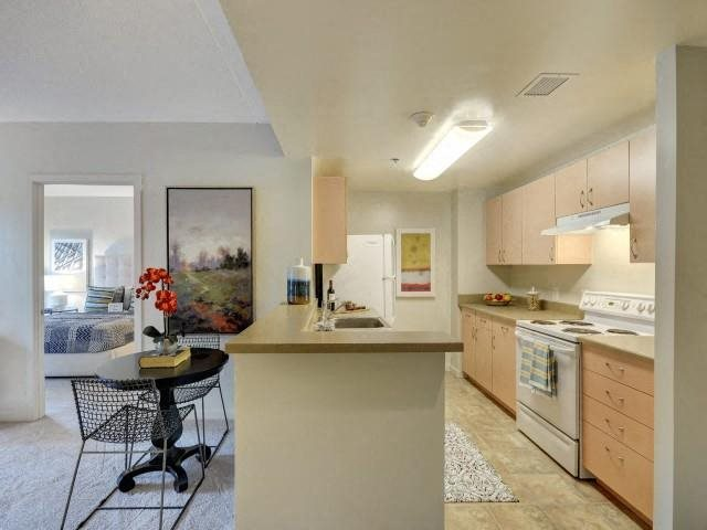 Open concept kitchens in all apartments, with ample cabinet space.