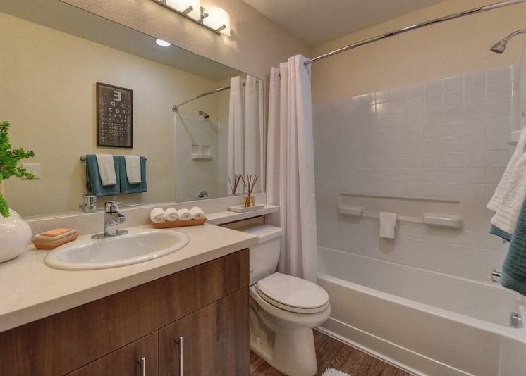 Luxury Apartment Community Bathroom
