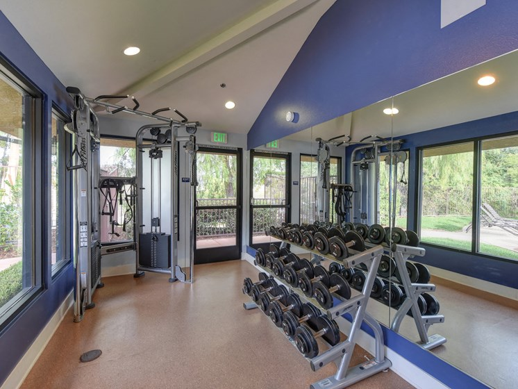 Luxury Apartment Community Fitness Center with Free Weights
