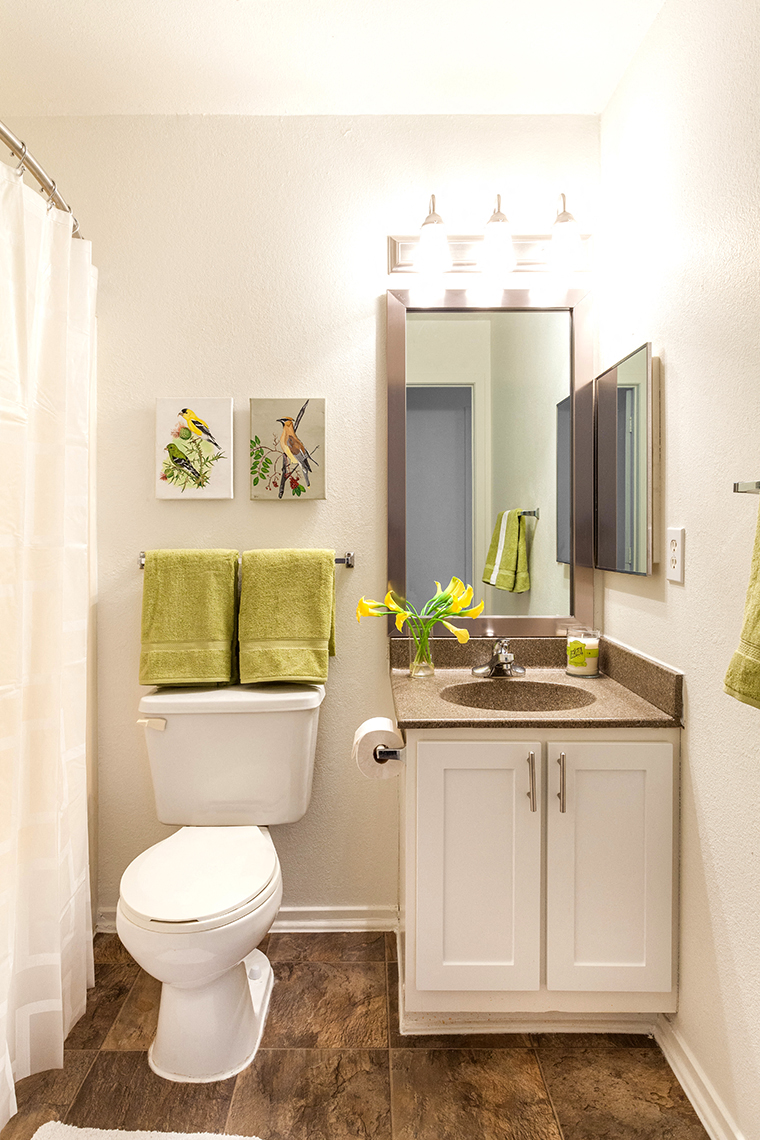Custom Vanity Lighting at Waldon Lakes Apartments, Orion Michigan