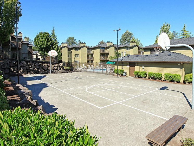 Outdoor Basketball Court with Hoop, Trees and Bushes