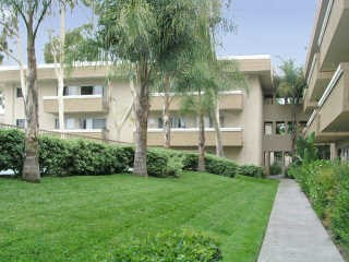 2175 South Mallul Drive 1 Bed Apartment for Rent Photo Gallery 1
