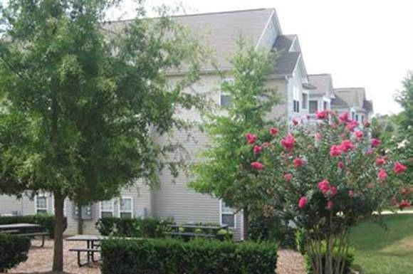 NC_Raleigh_MadisonGlenApartments Trees