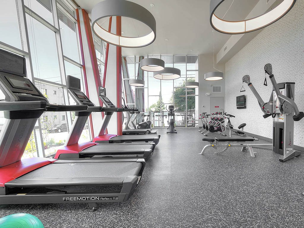 Up-to-date fitness studio with cardio and weight training equipment
