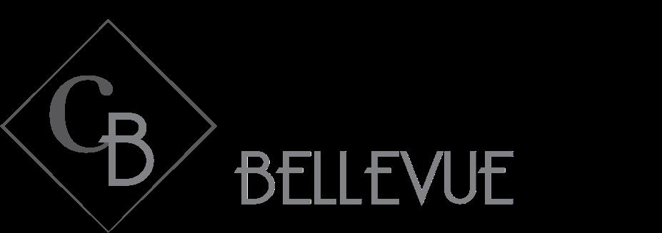 Bellevue Property Logo 29