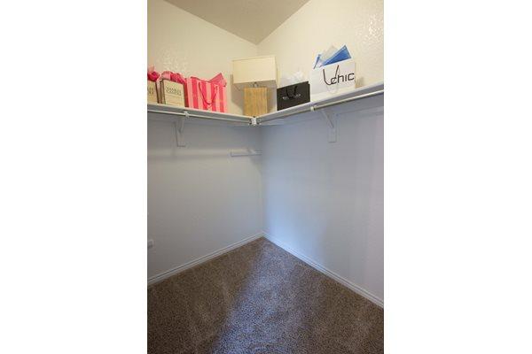Ashford Belmar Apartments has large Walk-in Closets