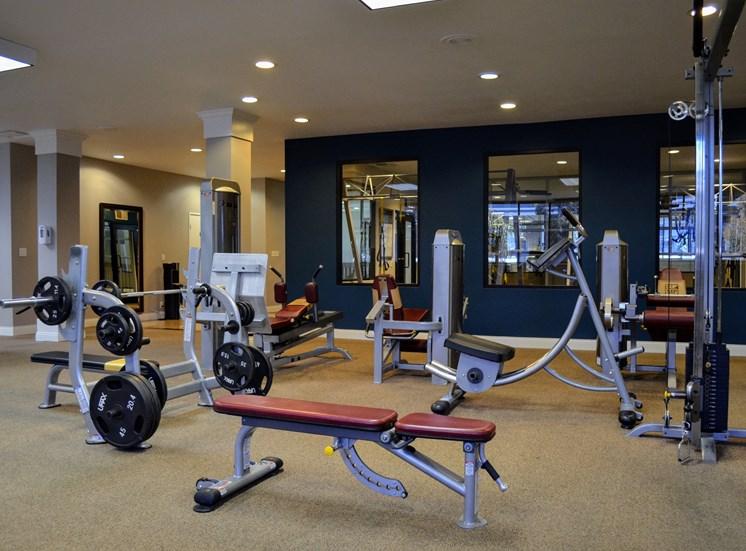Professional-Grade Fitness Center at Madison Park Apartment Homes, Anaheim, CA