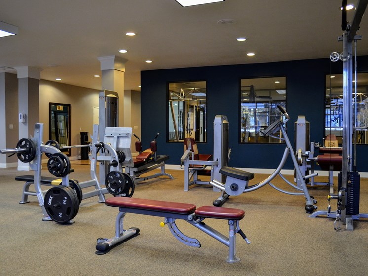 Professional-Grade Fitness Center at Madison Park Apartment Homes, Anaheim, CA