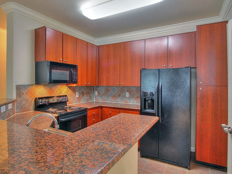 Granite Countertops In Kitchens at The Bridges on Eldridge, Houston, TX, 77077
