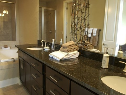 Townhome Master Bath Vanity