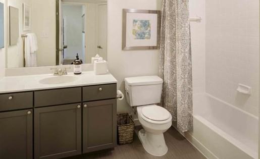 Upgraded Unit Bathroom