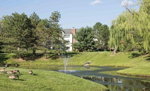 Polo Run Pond
