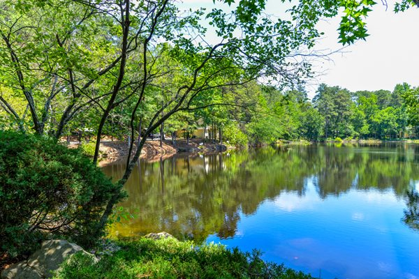 Beautiful lake views at Lakeside Apartment Townhomes | College Park, GA 30349