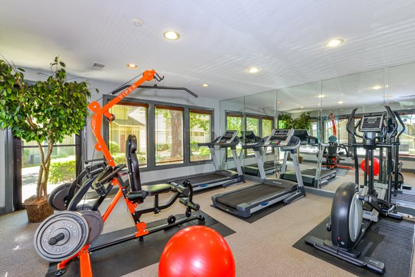 Heart Healthy Fitness Center at Linden Ridge Apartment Homes | Stone Mountain, GA 30083