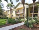 Shore Club Apartments Community Thumbnail 1
