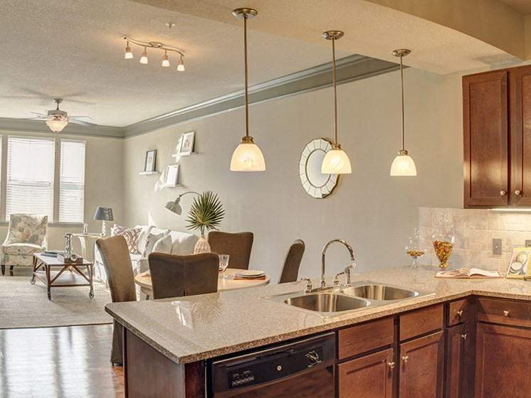 Stainless steel appliances at LangTree Lake Norman Apartments