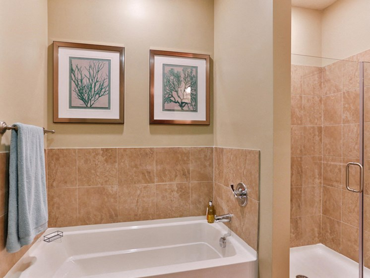 Spacious Bathrooms at LangTree Lake Norman Apartments