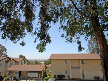 1624 Canyon Road 1 Bed Apartment for Rent Photo Gallery 1