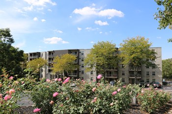 3375 McHenry Ave. 1-3 Beds Apartment for Rent Photo Gallery 1