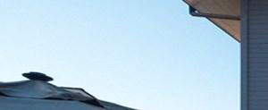 Napa banner 1