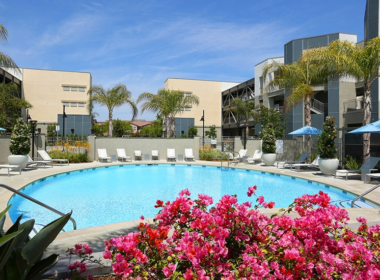 Mosaic Apartments_Oxnard CA_Large Community Pool