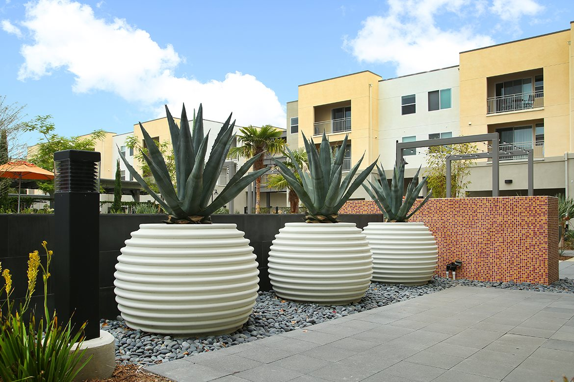 Mosaic Apartments_Oxnard CA_Potted Plants