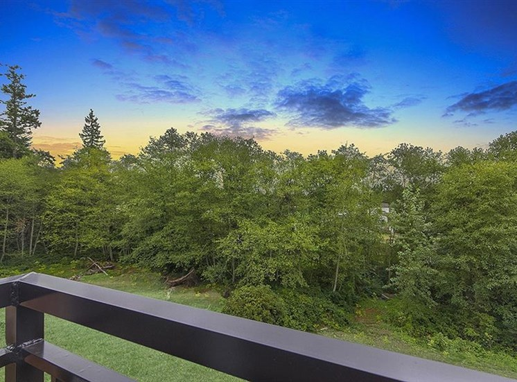 Stunning Surroundings Views from Balcony at Trillium Apartments, 4902 148th Street, WA