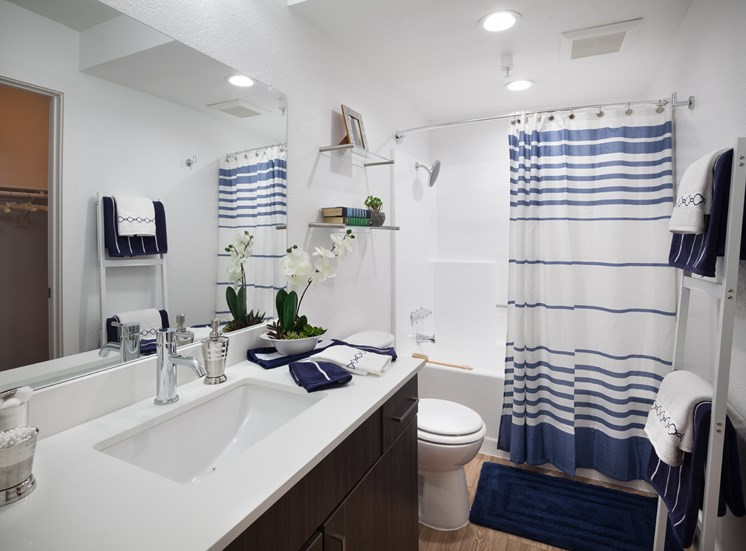 Master bathroom with quartz counter tops and designer fixtures