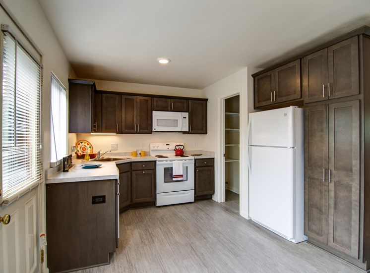 Remodeled Kitchen with Dark Cabinets