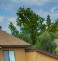 Glendale homepagegallery 2