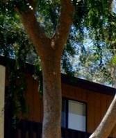 Glendale homepagegallery 3