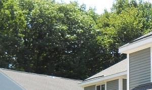 Private backyard patios at Northgate Apartments in Burlington, VT
